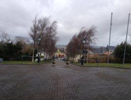 Carndonagh 4