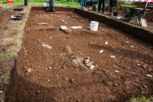 Cooley Dig Open Day Aug 21 2016 (1 of 34)