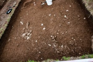Cooley Dig Open Day Aug 21 2016 (27 of 34)