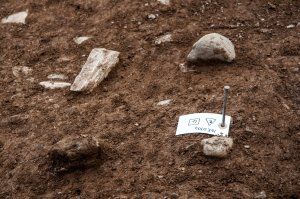 Cooley Dig Open Day Aug 21 2016 (33 of 34)